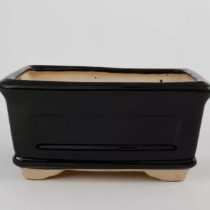 Bonsai Pot Ceramic Black