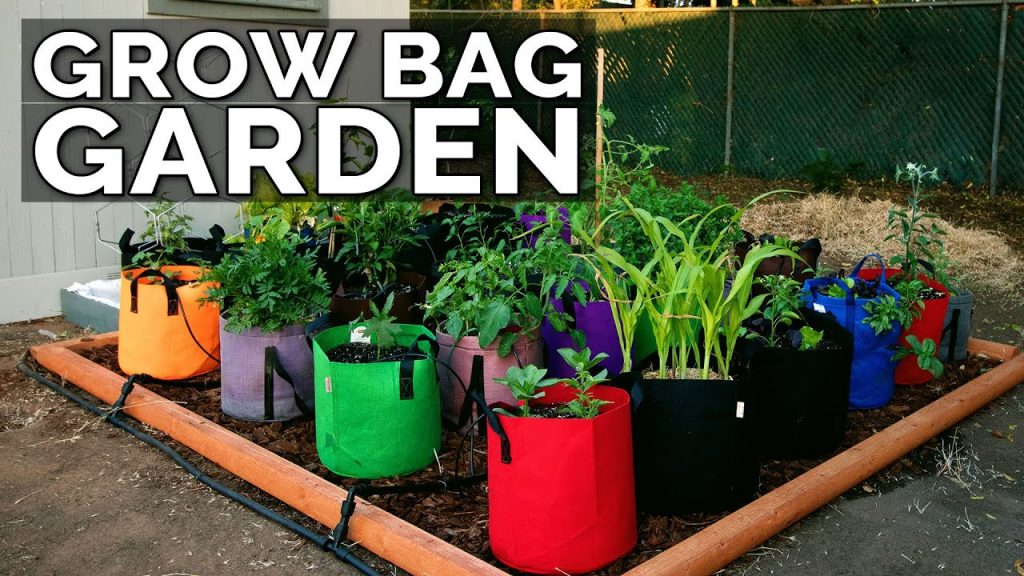 Grow Bags for Gardening